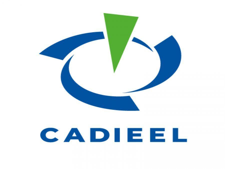 CADIEEL y la Subscretaría de Economía del Conocimiento trabajan para brindar soluciones 4.0
